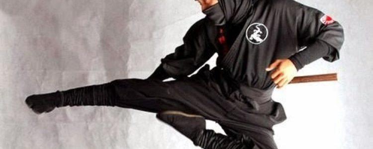 ninja_flying
